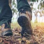 Hikers boots on forest trail