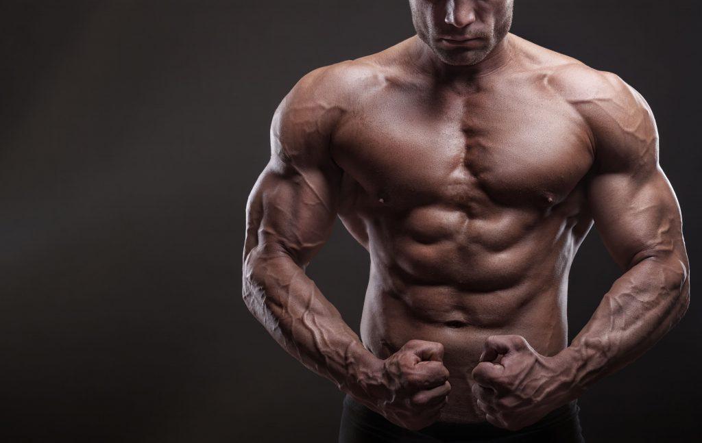 下部 大 トレーニング 筋 胸